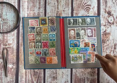 Explore a Postal Pastime