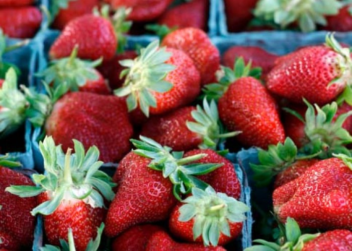 Do you know… NC grows a lot of strawberries?