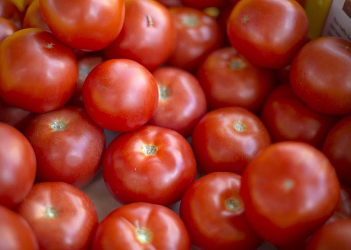 Vine-Ripe Fuel: Researchers Generate Electricity with Tomatoes