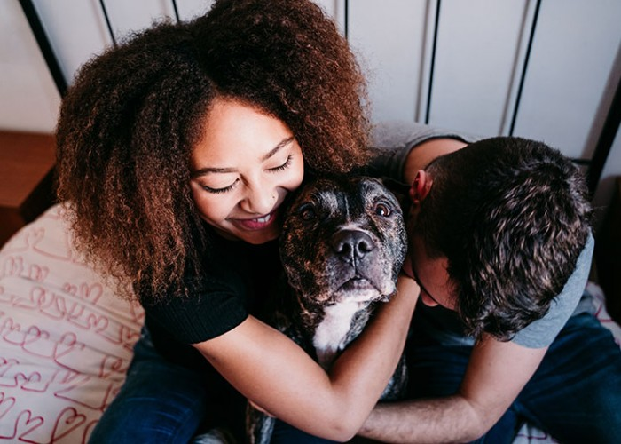 Involve Family in Helping a New Pet Thrive
